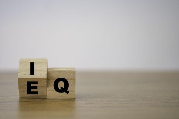 EQ(感情知性)検査で自身の強みを認知できる転職・キャリアチェンジ支援プログラム「Re-boot EQ」はじまる