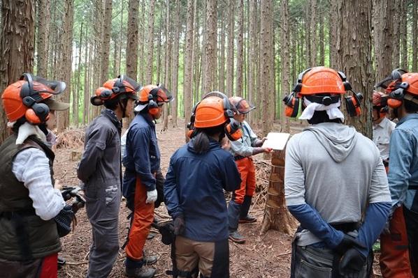 「持続可能な社会」と聞くとワクワクする人へ、森と人とのこれからの関わり方を本気で考えるカレッジが開講!