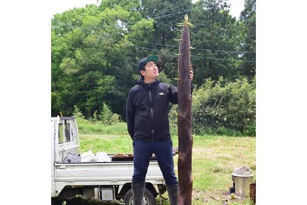 """放置竹林をメンマに!東京からUターン、宮崎で「国産100%メンマ」を作る代表に聞く""""地方起業""""ストーリー"""